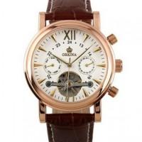 ESS Luxury Men Leather Strap Automatic Mechanical Watch - WM308
