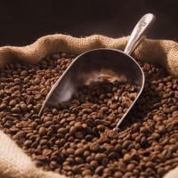 Kopi Robusta Roasted Bean 1kg