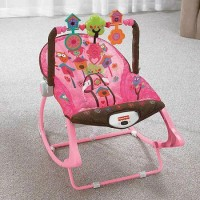 Bouncer Fisher Price Infant To Toddler Rocker Pink