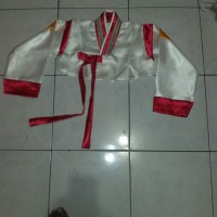 jeogori baju tradisional / adat korea hanbok hambok handbok hanbook