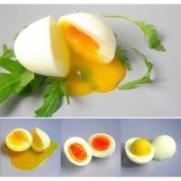 Perebus Telur Elektrik - Electric Egg Cooker Boiler Diskon