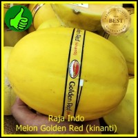 Biji Benih Seed Melon Kinanti Buah Melon Golden Red Kinanti Asli Murah