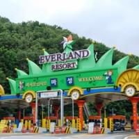 Tiket Everland South Korea Termurah Dewasa