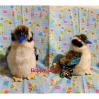 Boneka burung Belibis