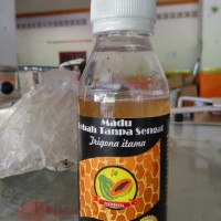 Harga madu lebah trigona itama 100 ml kelulut klanceng besar   Pembandingharga.com