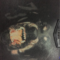 Givenchy Clutch Dog Kws
