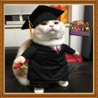 Baju anjing kucing model wisuda