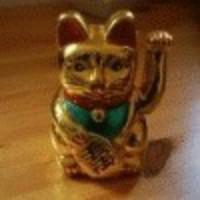 Kucing Hoki