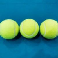 Bola Tenis Lapangan - Bola Kasti - Bola Tenis Latihan (Training Ball)