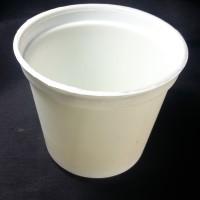 Pot Putih Tanaman Hias Kaktus Sukulen 10cm