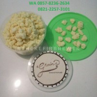 Jual Bibit Kefir (Grains) Murah