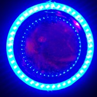 lampu motor led Projie U8 mini AE + DE bukan HID projektor