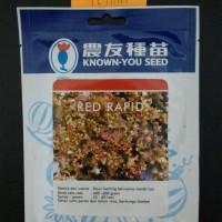 Benih Selada Merah Lettuce RED RAPID 10 Gram