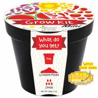 Jual Sunflower Mini Grow Kit Writable Sticker/ Benih Sunflower Murah