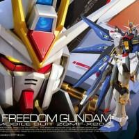 Bandai RG real grade 1/144 strike freedom gundam