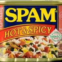 SPAM Hot and Spicy Tabasco Luncheon Canned Meat Daging Pedas