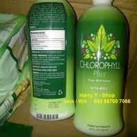 SYNERGY LIQUID CHLOROPHYLL PLUS KLOROFIL khlorofil ISI 730ML
