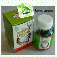 Seahorse Ginseng / Obat Ginjal Sakit Pinggang