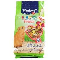 harga Vitakraft Guinea Pig Life 600gr 25109 Makanan Marmut Tokopedia.com