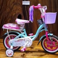 Jual Beli Sepeda Anak ELEMENT RAINBOW 12 Baru | Sepeda BMX Lain-lain