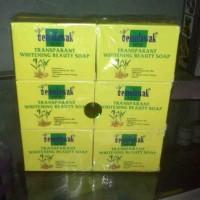 Sabun TML / Temulawak Pemutih Wajah - Whitening Beauty Soap