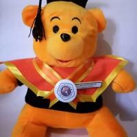 Jual Boneka Wisuda Winnie The Pooh | Boneka Wisuda Pooh |Hadiah wisuda Murah
