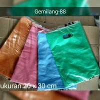 Shopping Bag Kantong Balanja plastik Online HD Plong Ukuran 20 x 30 cm