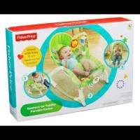 fisher price newborn to toddler portable rocker bouncer bayi mainan