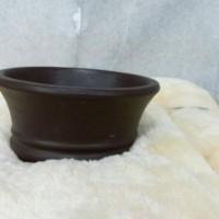 harga pot bonsai mini Tokopedia.com
