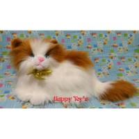 Boneka Kucing Anggora Lucu