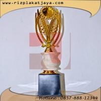 contoh trophy wisuda, took trophy wisuda Surabaya