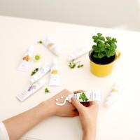 [The Skinfood] Perfumed shea butter hand cream