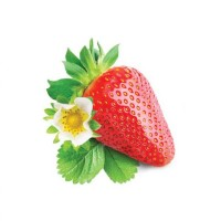 Jual INAWERA Flavor 30ml - SHISHA STRAWBERRY Murah