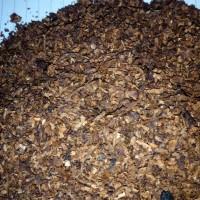 Jual Tembakau XB Coklat Kualitas Super Murni Asli Rokok Lintingan Murah