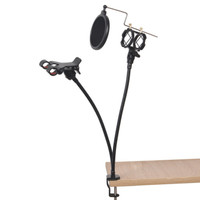 Professional Michrophone And Handphone Holder Sing Singsong Singing