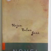 Novel Hujan Bulan Juni - Sapardi Djoko Damono