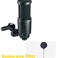 Audio technica AT2020 with pop filter