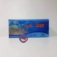 Cal-95 30's