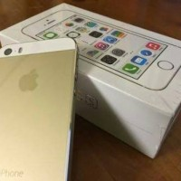 IPHONE 5S GOLD 16GB DISTRIBUTOR