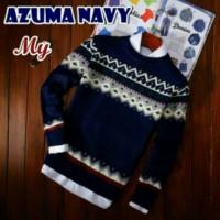 Azum navy sweater