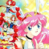 DVD Anime Wedding Peach Subtitle english