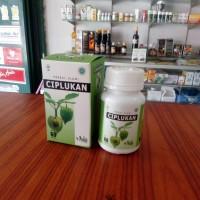 Kapsul Daun Ciplukan Ceplukan Physalis Obat Paru Diabetes Hipertensi