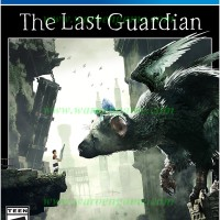 PS4 The Last Guardian (R3 / Reg 3 / English Playstation 4 Game)