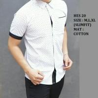 Baju Kemeja Pria Batik Modern Slimfit lengan pendek HES-20
