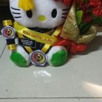 Jual Boneka wisuda hello Kitty putih 25cm lengkap Murah