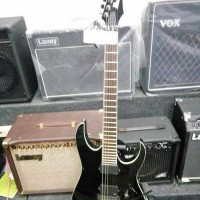 Gitar Ibanez RGIR20E-BK (Iron Label)