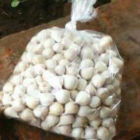 Jual Bawang Putih Tunggal/Bawang Lanang 250gram Herbal alami Murah
