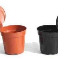 Jual pot kecil untuk bunga artifical uk S Murah