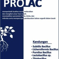 Prolac A