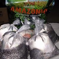 Soil ADA Amazonia